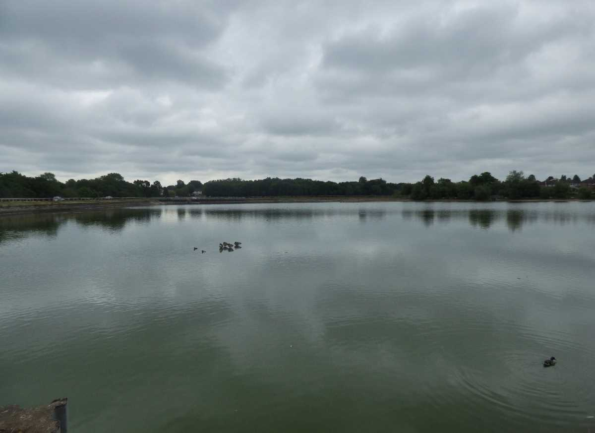 Earlswood Lakes, Solihull - A wonderful open space!